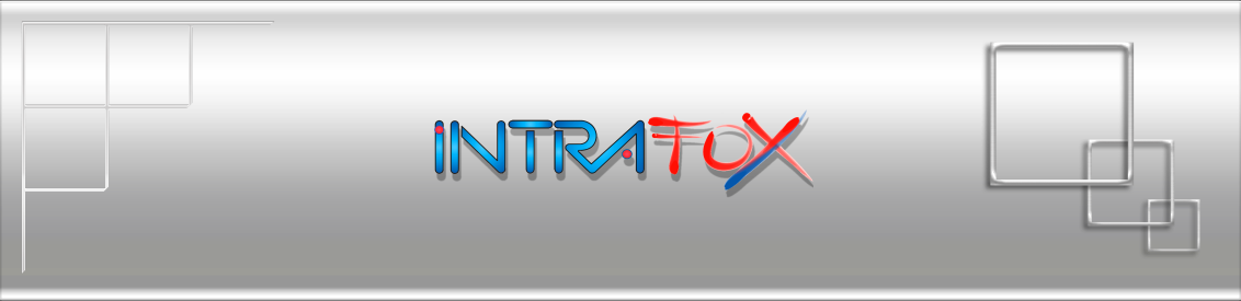 IntraFox Kft.